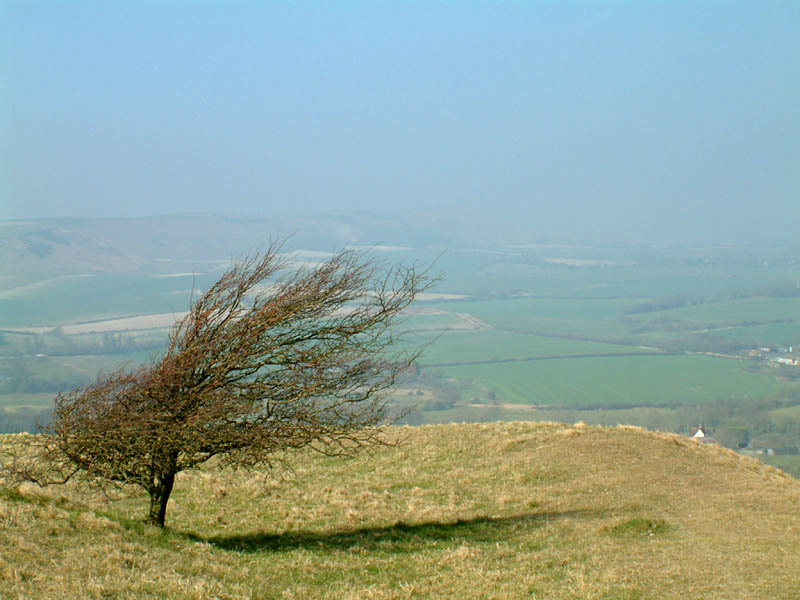 View from Windover Hill to Firle Beacon