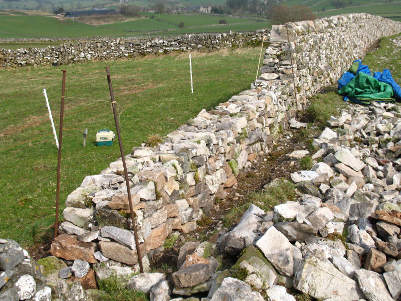 Limestone drystone wall construction, Peak District
