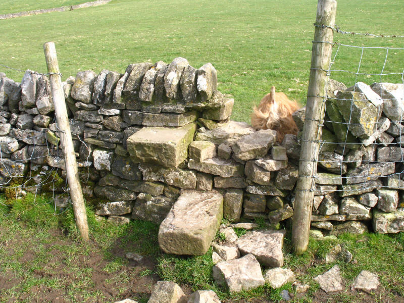 Stone stile, Peak District