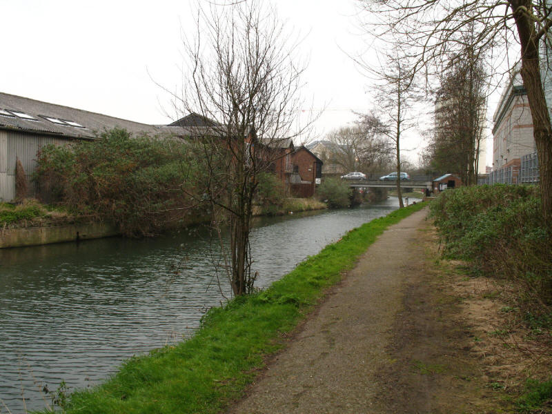 River Stort in Bishop's Stortford