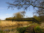 A boardwalk leads us to the bridge over the River Thet during a walk on the Peddars Way