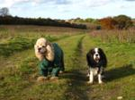George and Ellie on the Peddars Way
