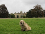 George in front of Culford School