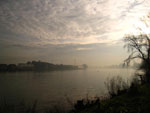 misty River Thames near Barnes