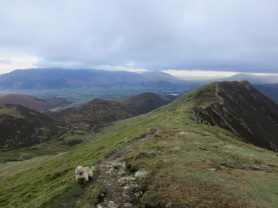George on the ridge to Causey Pike in the Lake District