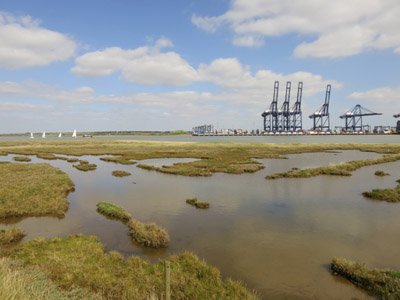 River Orwell and Felixstowe Docks from near Shotley Marina