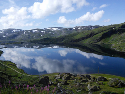 View from the Bergen Line train on the Hardangervidda plateau